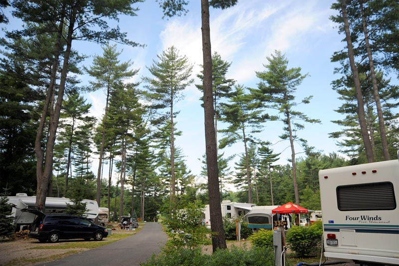 Pines (site 300-354) Campsite Area - Fabulous Shaded Pull-throughs