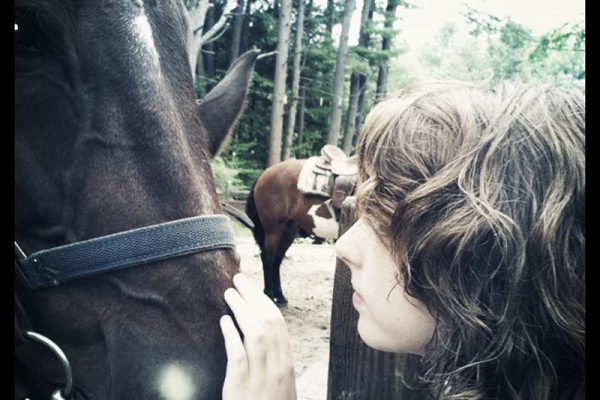 An upclose picture of a girl and a dark brown horse. The girl to the right has her had on the horse's nose. In the background is another lighter brown horse.