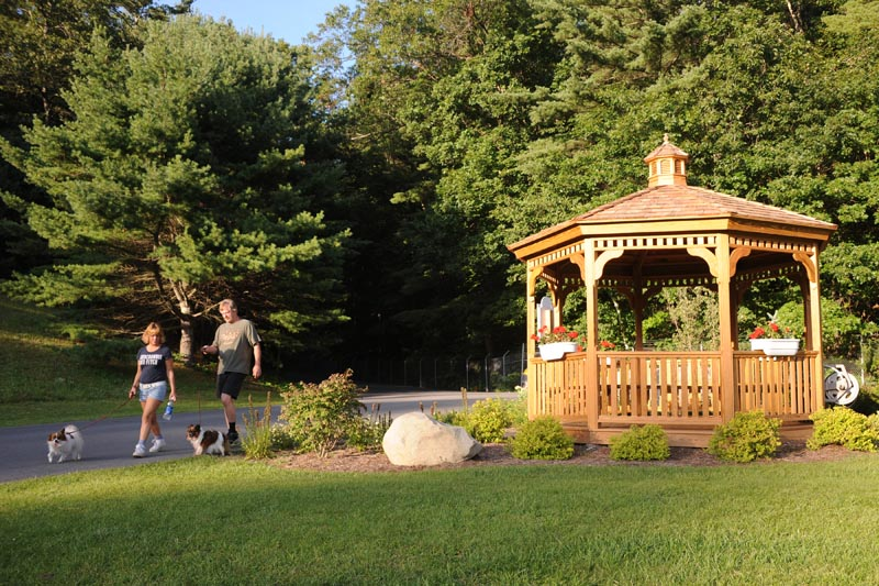 Lake george rv resort things to do on and off site for Lake george cabins and rv park lake george co