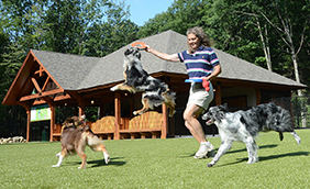 Lake George RV Park charlies bark park