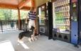 Vending Area Featuring K9 Treats