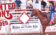 The Painted Pony Rodeo located in Lake Lazune is 15 minutes away
