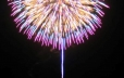 Don't miss Thursday night fireworks over Lake George (Summer Only)