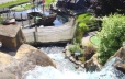Multiple top rated mini-golf courses (Pirates Cove)