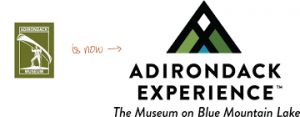 Adirondack Experience New Logo with Mountains
