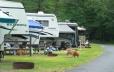Camping along Woodland Drive