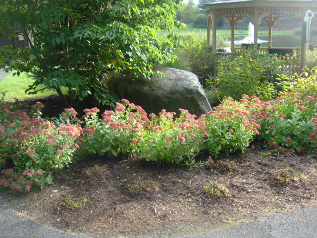 Guest submitted photo – gazebo near bass fishing pond