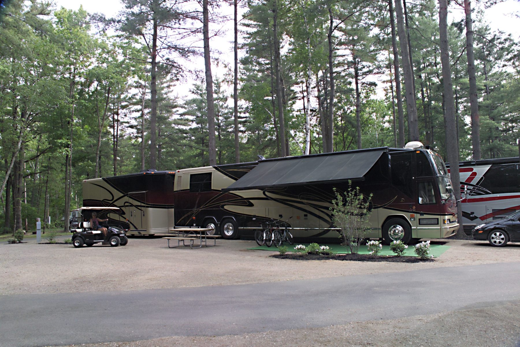 Flat sites that are sure to fit various RV types and lengths