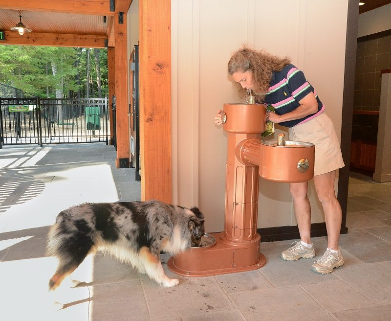 Water fountains for dogs and people