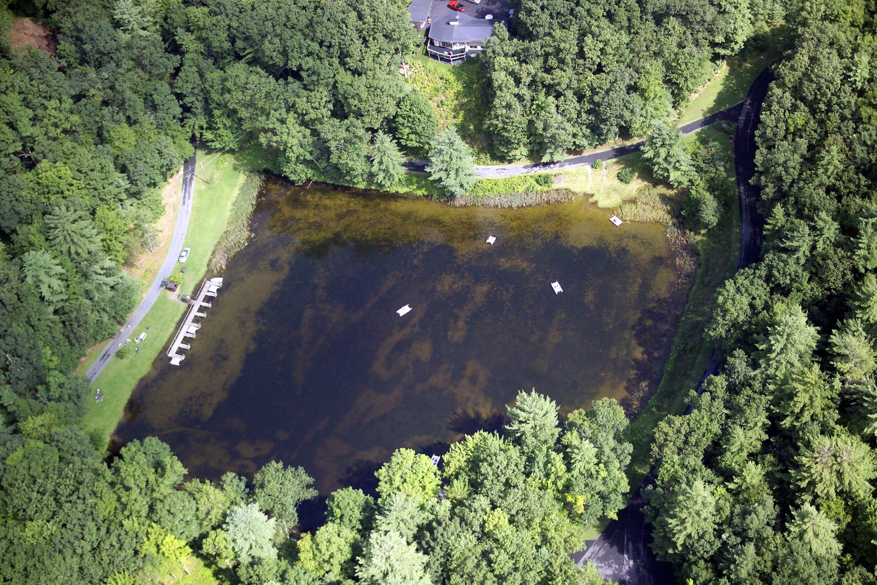 Aerial of our spring-fed paddle boat pond