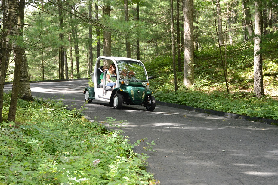 Electric golf carts are allowed – once registered with the front office