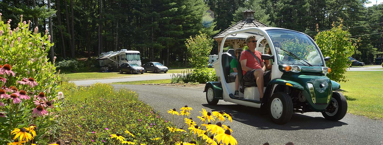 Family driving golf cart